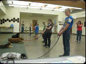 Dog Training Classes Rapid City Sd
